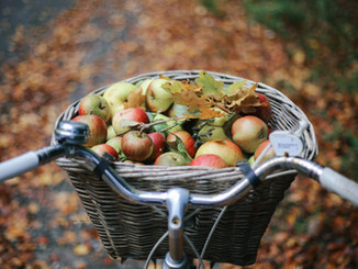 Autumn Apple Picking and Homemade Galettes