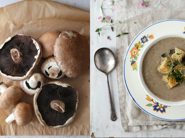 Mushroom Soup Duo