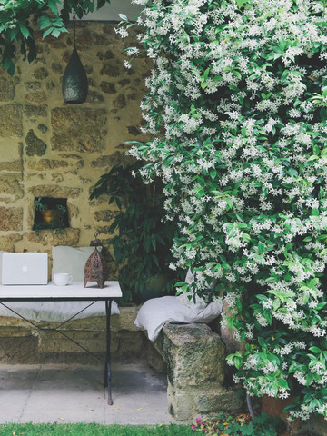 Jardin Mountagnac_edited.jpg