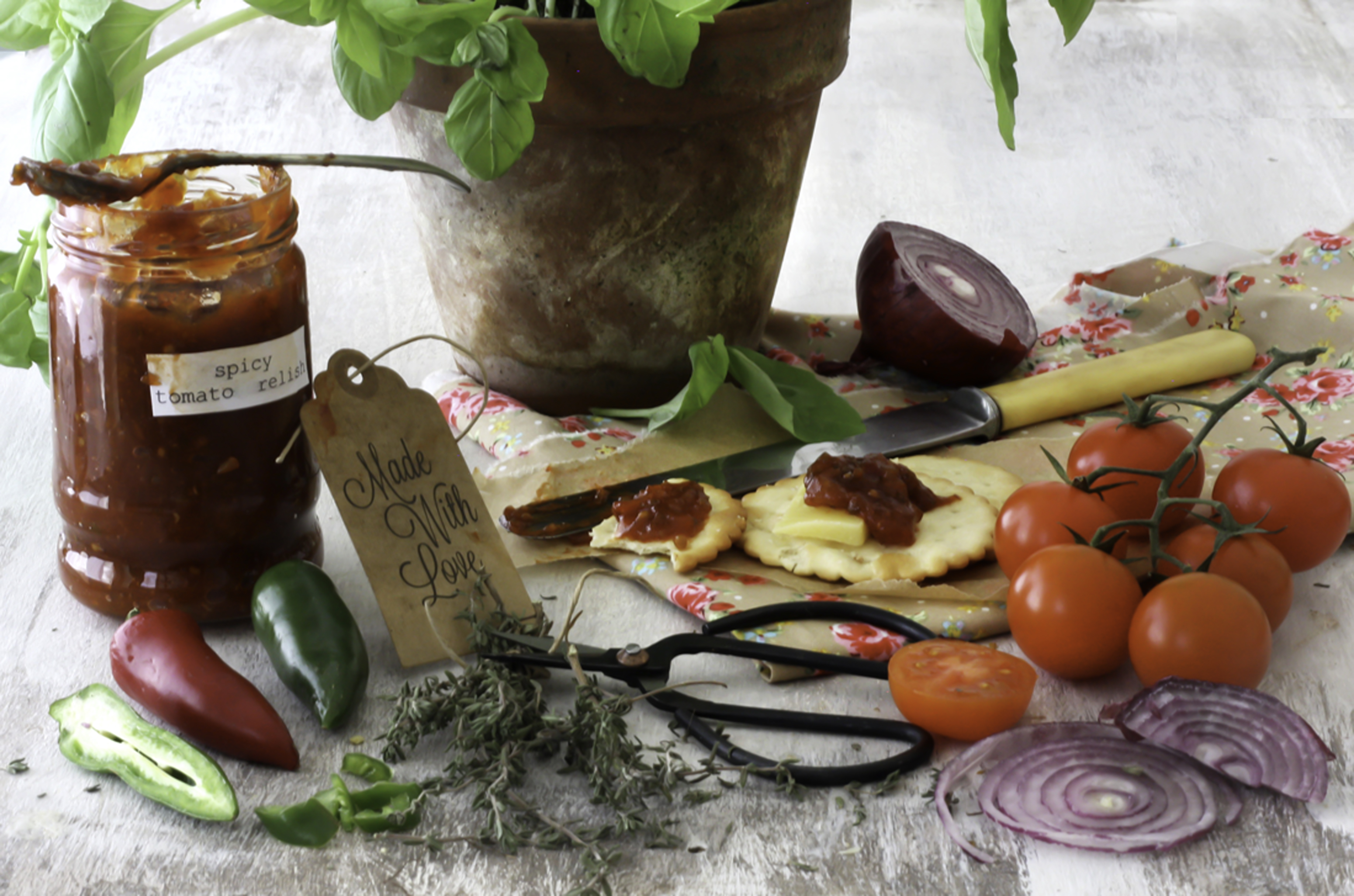 Ingredients- Spicy Tomatoe Relish by Rossana Novella