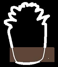 Cactus pot brown stripe padding.png