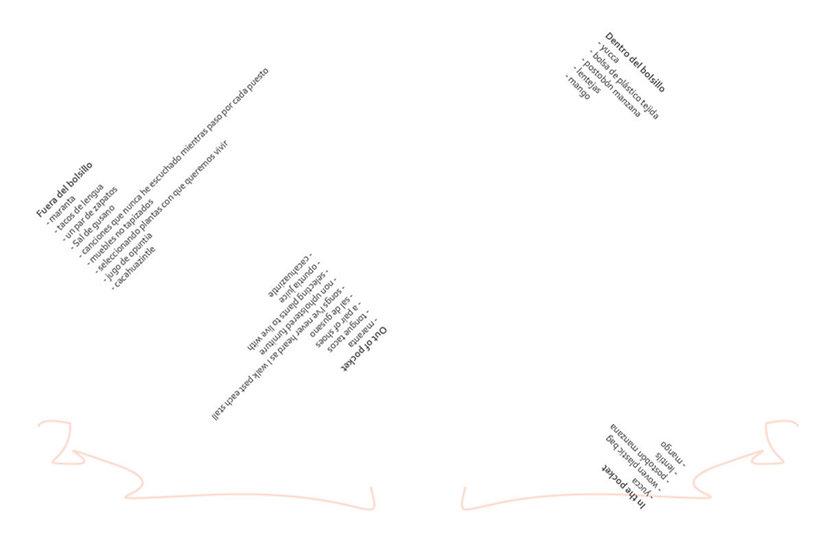 DM+LPsoma-publication (for website image