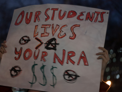 Our Lives > Your NRA $$$