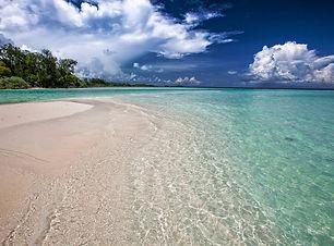 white-sand-beach-2252020_1920.jpg