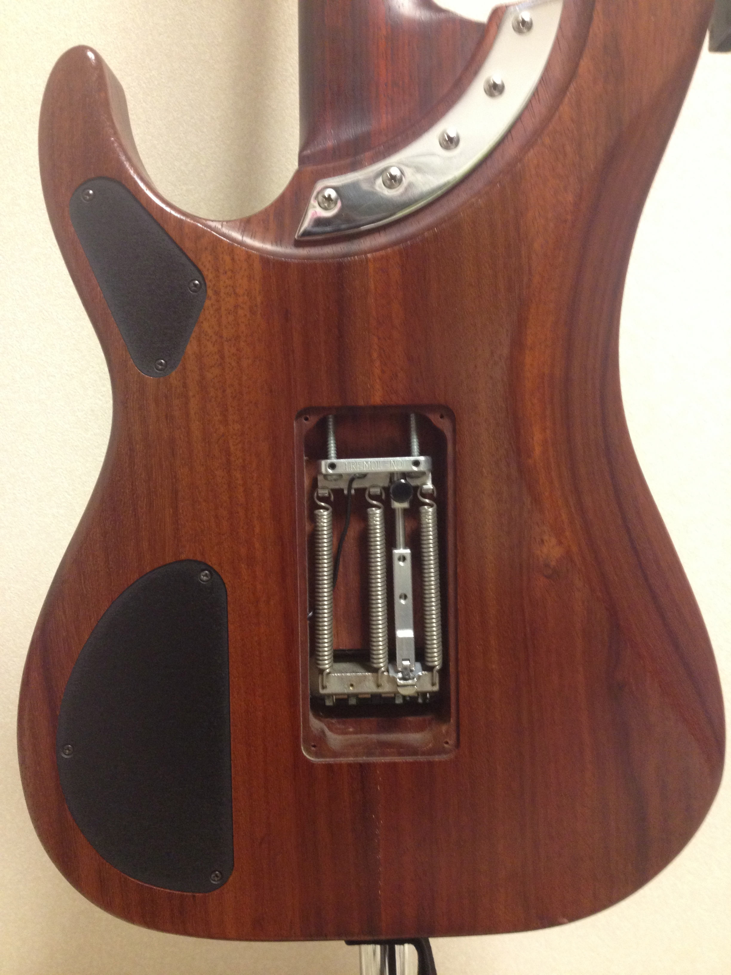 Washburn N4 padauk  back side