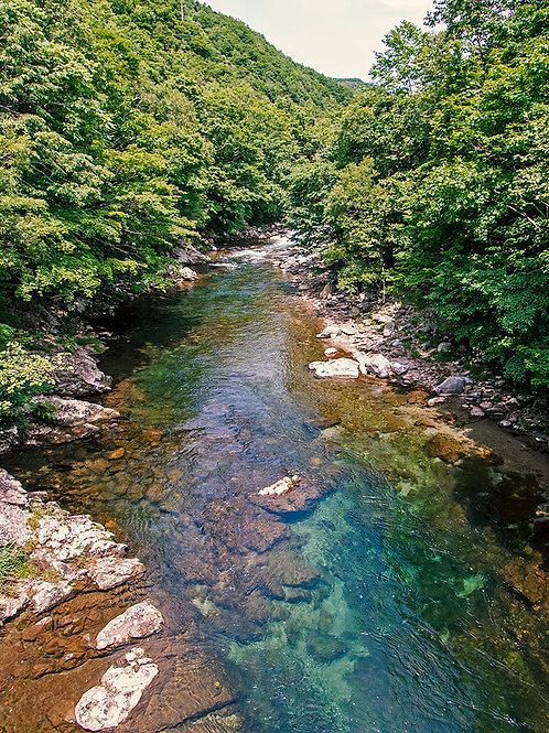 突撃幌満川とダム湖 ニジマスキャンプ