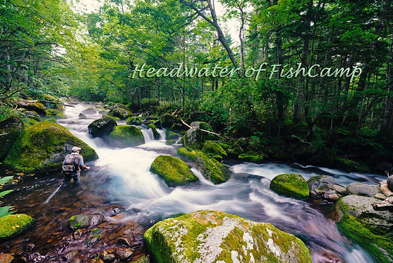 Headwaters021.jpg