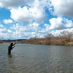 Spring Swing Amemasu Fishing.jpg