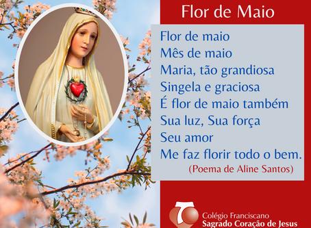 13 DE MAIO - HOMENAGEM À MÃE DE DEUS