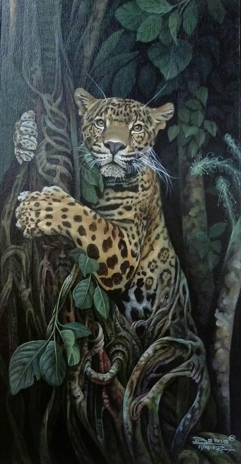 Amazonia mi Hogar