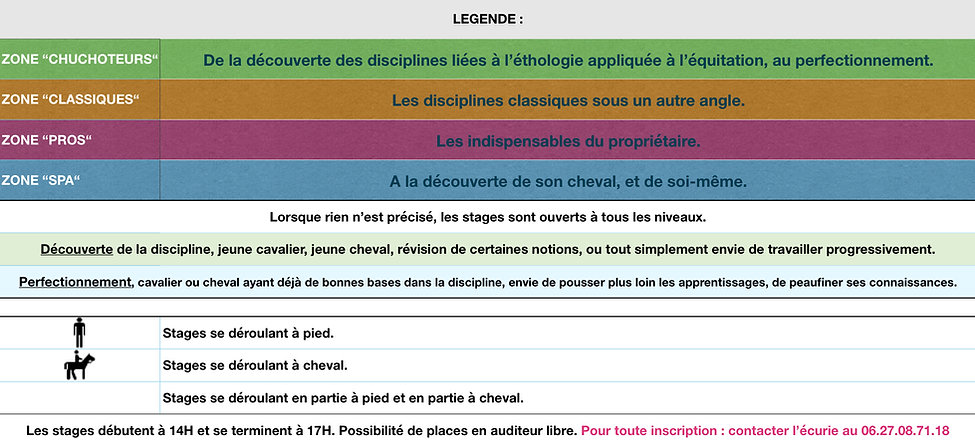 STAGES CHEVAL EQUITATION