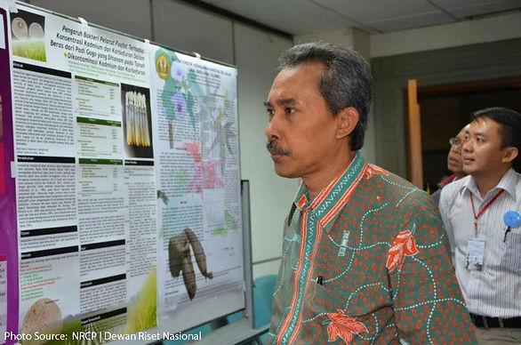 IID Workshop in Indonesia