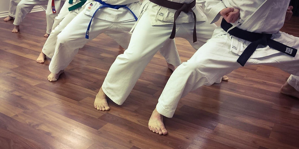 Mixed Class (6+ All Belts)  July 31st