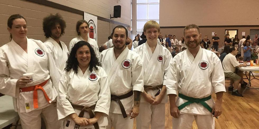 Mixed Class (All belts, 16+)