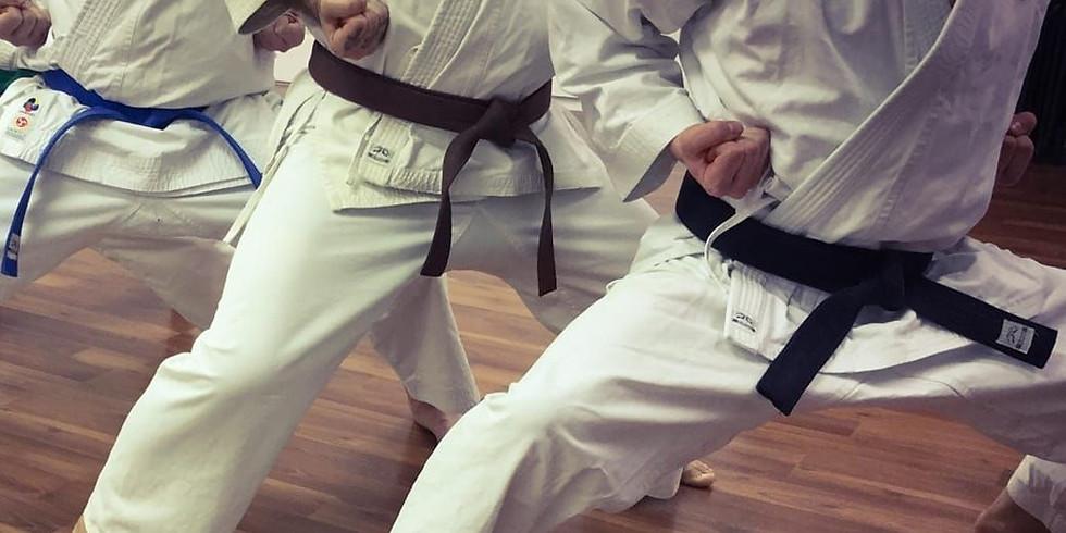 Blue/Brown/Black belt class