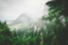 jace-afsoon-K4XHqPZq66c-unsplash-768x512