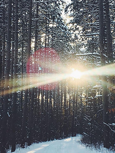 snowpath_brightlight copy.jpg