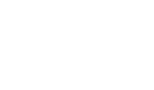 ArielRTTlogo-copy.png