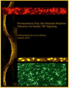 Lori Dissertation Cover