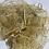Thumbnail: רדי נצנצים שמנת מניפה אורגנזה