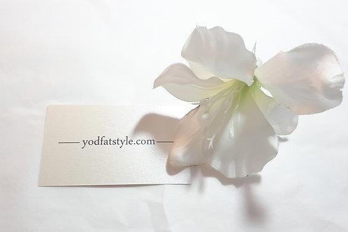 פרח לבן גבוה