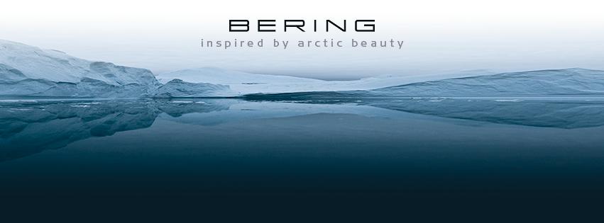berings02.png