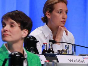Por que gays adoram o partido de extrema-direita da Alemanha