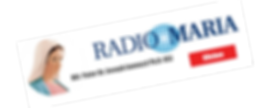 RM logo copy 1.png