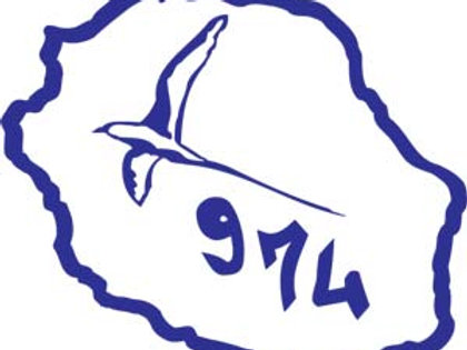 Autocollant Stickers carte île de la Réunion paille en queue 974