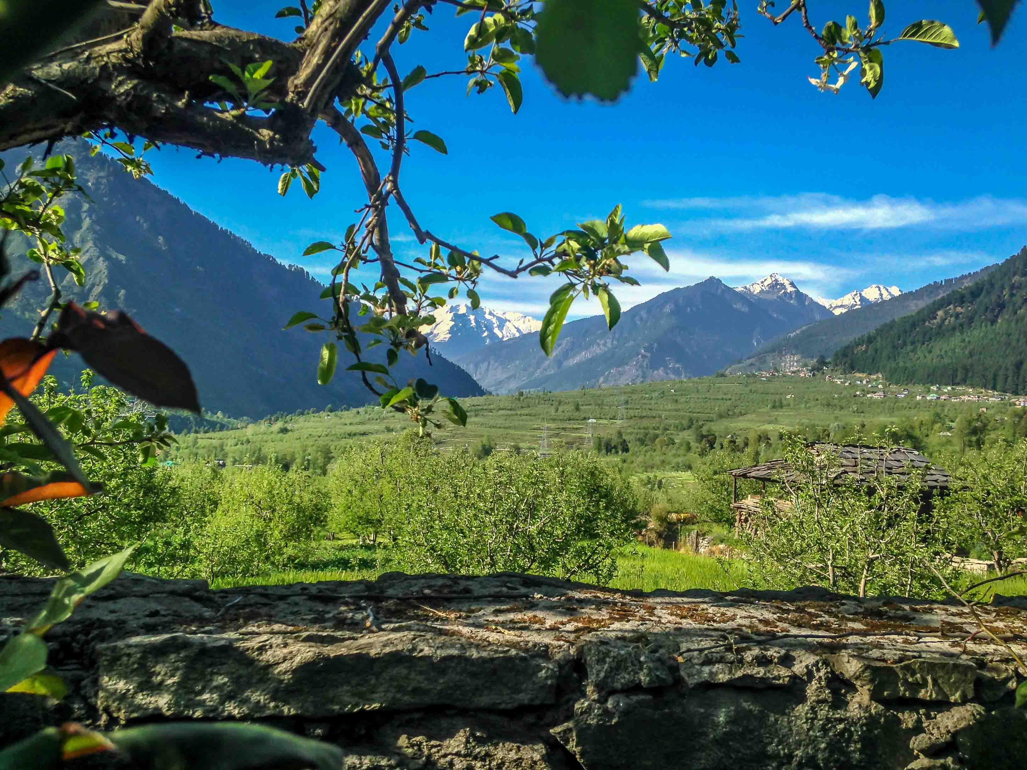 Manali Iyengar Yoga Retreat