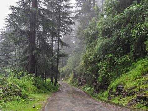 Other Activities Around Kullu-Manali Valley