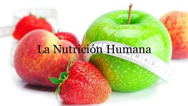 la-nutricin-humana-1-638.jpg