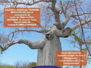 """Report de l'exposition """"Madagascar, le bois dans tous ses états"""""""
