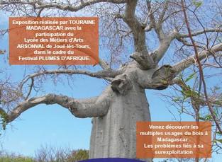 """Report de l' Exposition """"Madagascar, le bois dans tous ses états"""""""