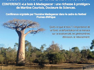 Conférence: le bois à Madagascar