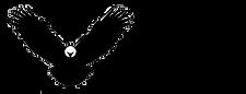 Eagle logo & name (side).png