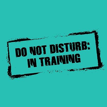 Do Not Disturb: In Training