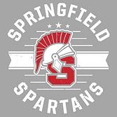 Springfield Gen4 Light Grey.png