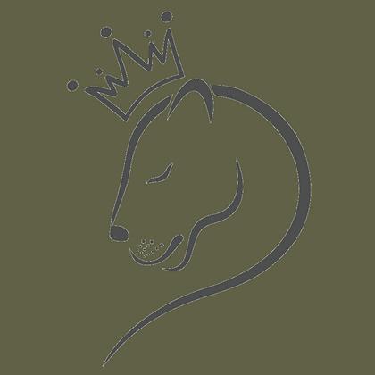 Female Lion Couple/Individual