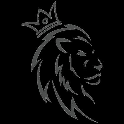 Male Lion Couple/Individual