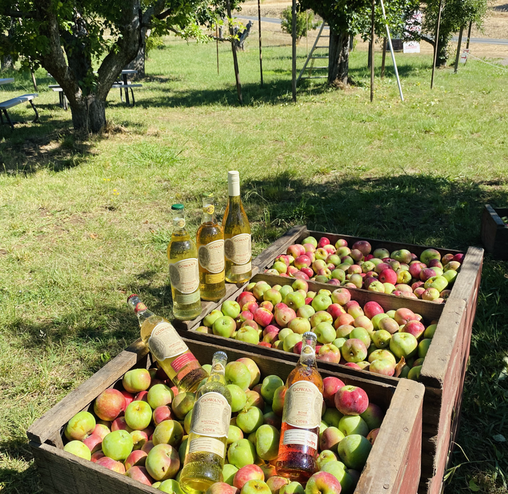 Apple Boxes cider 210801.heic