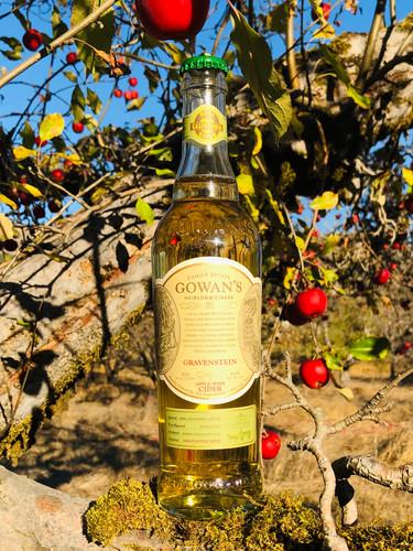 Gravenstein Bottle Tree IMG_3208.jpg