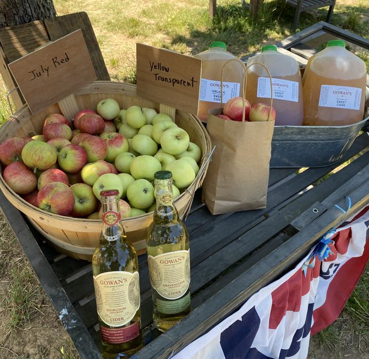 Apple Basket Cart 2021IMG_5911.HEIC