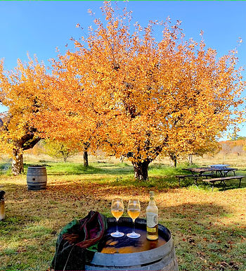 Fall Harvest Festival and Chutney Challenge