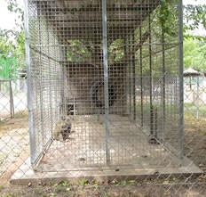 zoo_indefinit3.jpg