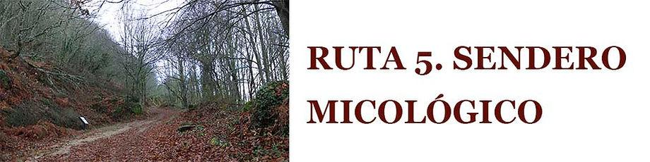 RUTA5.jpg