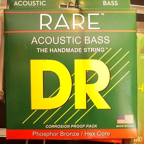 DR Rare Acoustic Bass