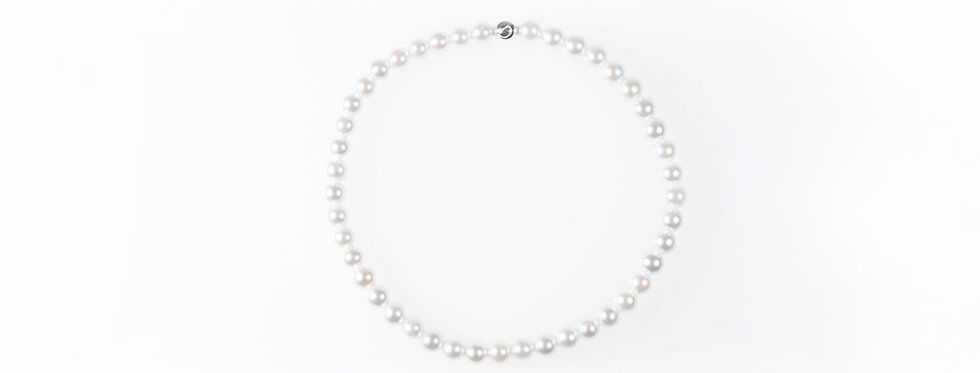Akoya Pearl Pure Bracelet