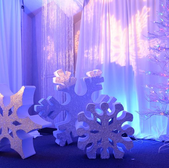 Winter Wonderland, Corporate Event, Viverae