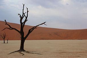 Namibia2.jpeg